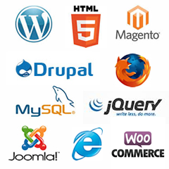 Web technologies MetApps work with